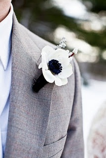 if the guys do wear flower bouts, then i'd like them to wear these. anemones. i know nothing about flowers...