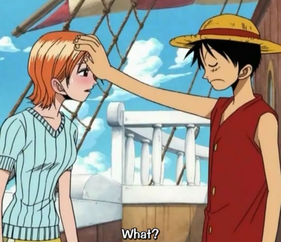 101 best images about LUFFY X NAMI on Pinterest   We heart