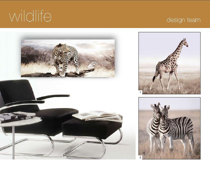 """DECO GLASS """"WILDLIFE"""". 125x50cm. € 95,90.   50x50cm. € 47,90 p.st"""