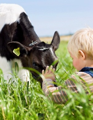 A baby and a baby cow :)