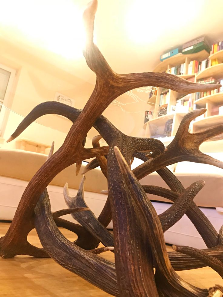 Chalet Alpin | Coffee table round | Antler funiture