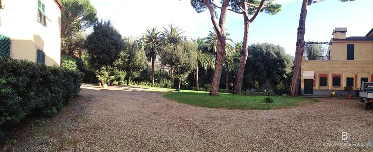 The #garden surrounding the #villa