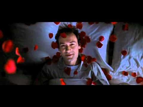 SPECTACULAR scene from American Beauty
