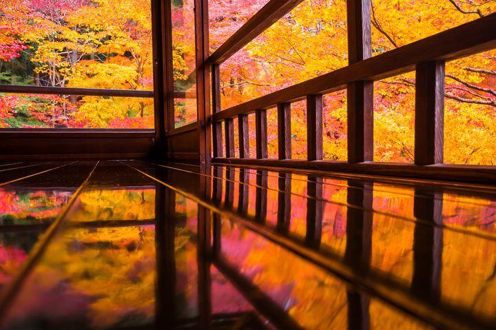 2ヶ月間限定の幻の絶景。人生で一度は見たい京都「瑠璃光院」の秋の絶景とは | RETRIP[リトリップ]