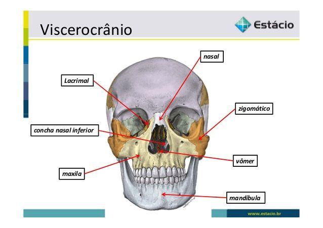 Desvios e deformidades ósseas e articulares em crianças com paralisia cerebral 4