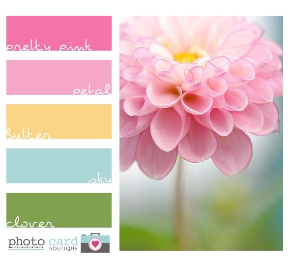213 Best Design Color Images On Pinterest Home Ideas