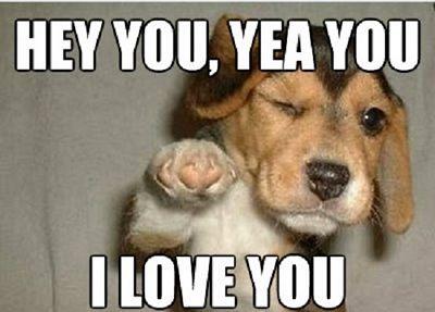 Love Memes - 50 Best Memes About Love