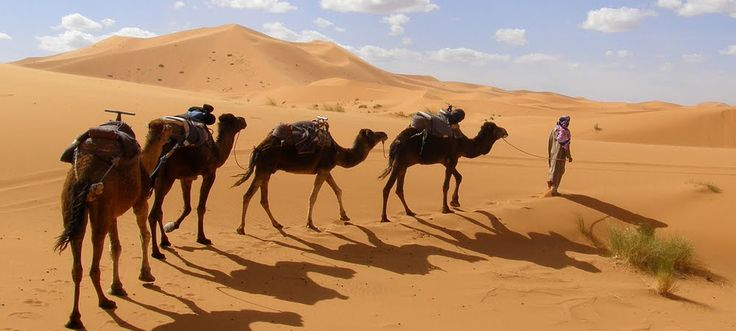 http://travelezecouk.weebly.com/traveleze-weebly-blog/3-reasons-to-visit-the-world-famous-morocco
