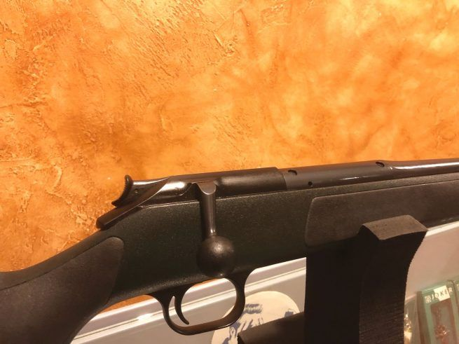 Blaser R93 Profesional Cal 6 5x68 Blaser R93 Profesional Cal