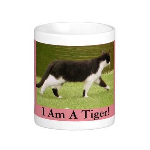 I Am A Tiger Domestic Cat