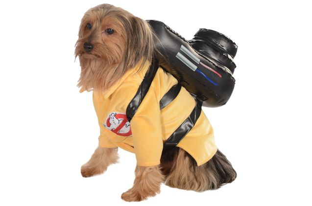 Top 10 Howlarious Dog Halloween Costumes