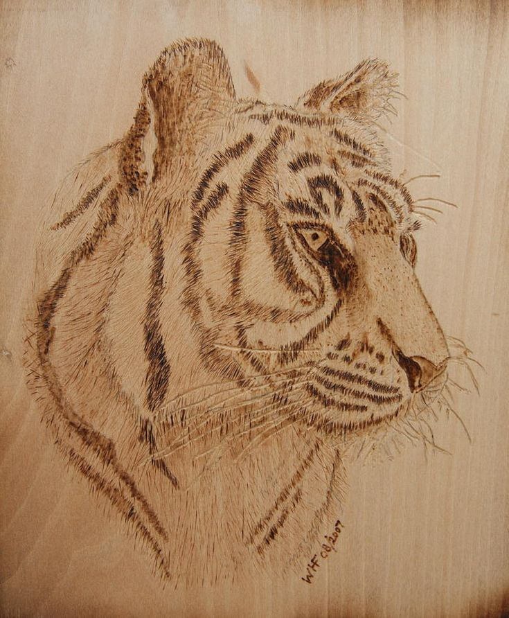 Tiger On Wood Pyrography