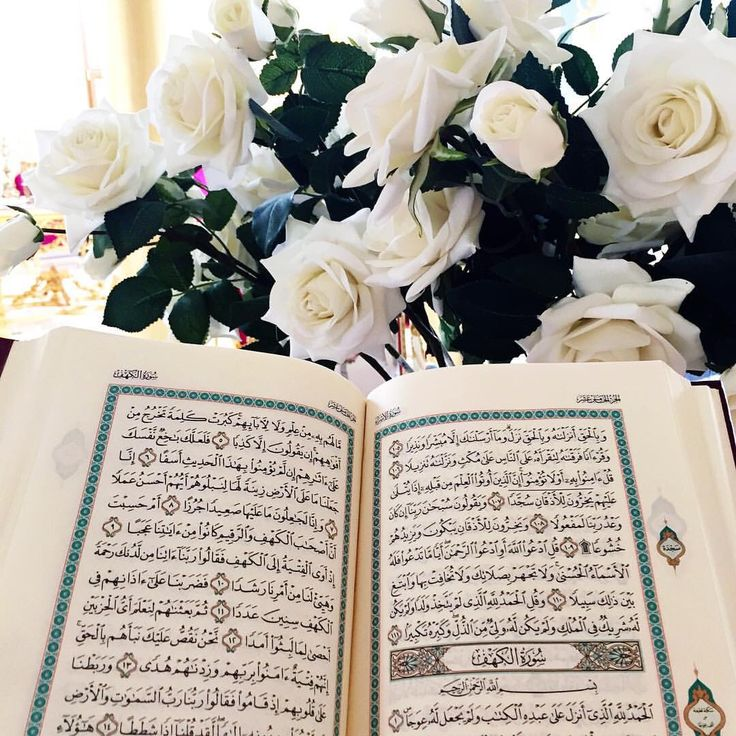 Beautiful Quran .. Mashaa Allah