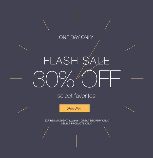 Flash Sale: 30% off; one day only!
