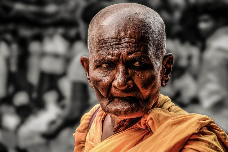 Portrait of an old monk