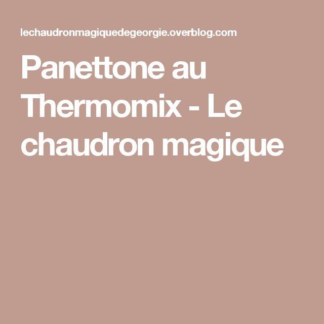 Panettone au Thermomix - Le chaudron magique