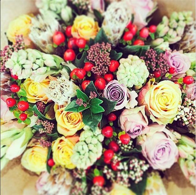 rooi rose Instagram - Flowers | Blomme #flowers