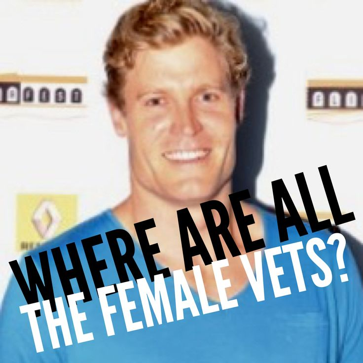 Why are most celebrity vets male if most working vets are female?