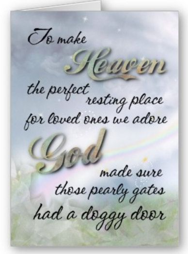 To make HEAVEN the perfect resting place for loved ones we adore GOD made sure those pearly gates had a doggy door...