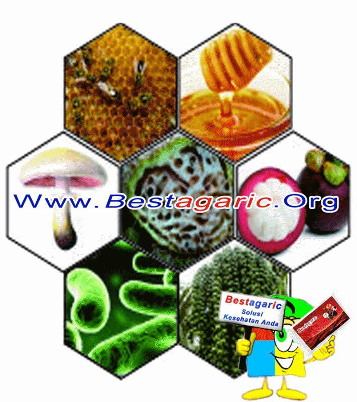Manfaat Bestagaric untuk Kesehatan Info: http://www.bestagaric.web.id/manfaat-bestagaric-untuk-kesehatan/