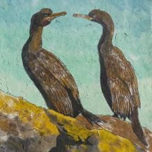 Cormorants This open edition Cormorants #print is mounted and signed by the artist. The prints are produced by the #Giclée printing method. http://www.marketdirect.ie/cormorants-print