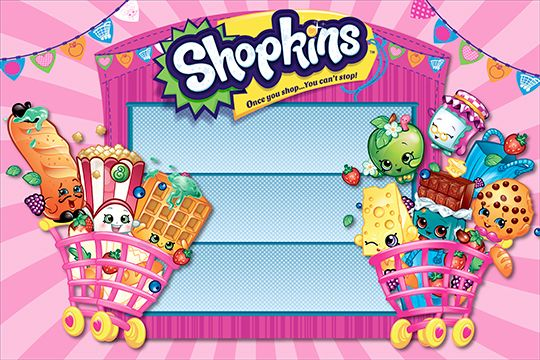 Vinyl banner for Shopkins AllstateBanners.com