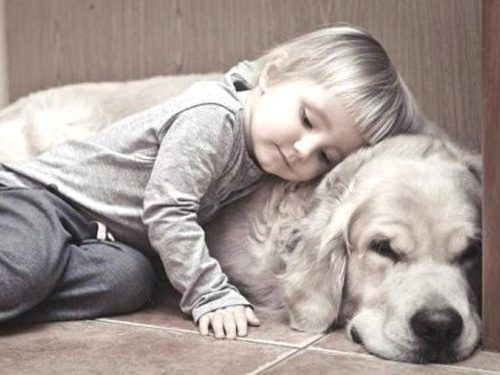 Aww: Animal Lovers, Best Friends, Young Children, Dogs Photos, Naps Time, Funny Photos, Kids, New Friends, Golden Retriever