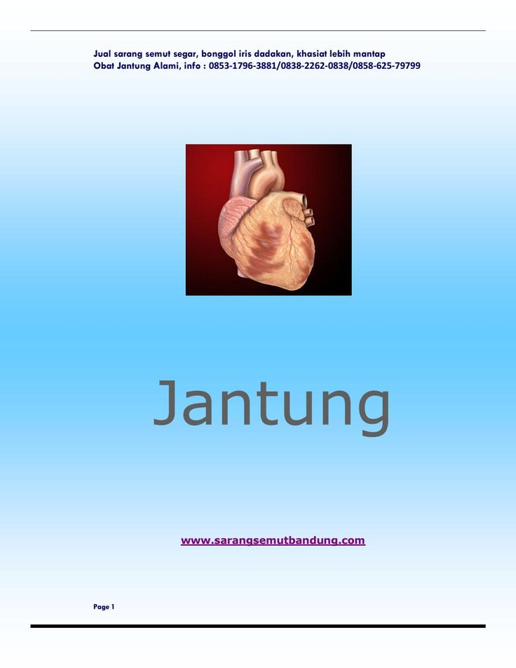Jantung  Kenali jantung Anda. Bagaimana cara kerja dan keajaiban yang telah Anda nikmati setiap hari dari jantung Anda. Penyakit apa saja yang beresiko mengintai jantung Anda? Dan bagaimana kecanggihan pengobatan kedokteran saat ini menanganinya? Selengkapnya Anda kunjungi http://www.sarangsemutbandung.com/2016/04/jantung.html