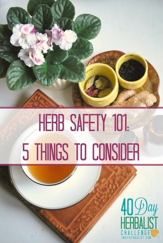 Important things to know for safely using herbs // Indie Herbalist