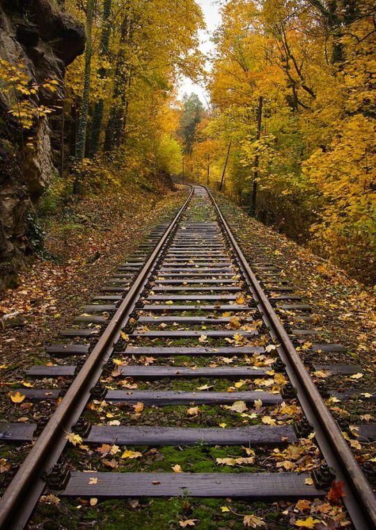 Autumn Rails by Jaro Vosahlo    ⊕ radivs ⊕
