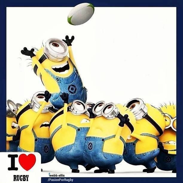 You just gotta smile at this. MINIONS!!! Rugby