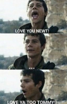 #wattpad #fanfiction Cute pics of everybody's favorite OPT: NEWTMAS