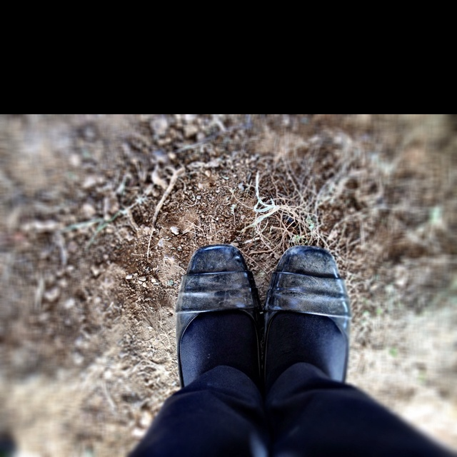 Dusty shoes