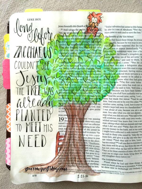 Zacchaeus | sparrowsnestblog.com | Scripture Journaling ...