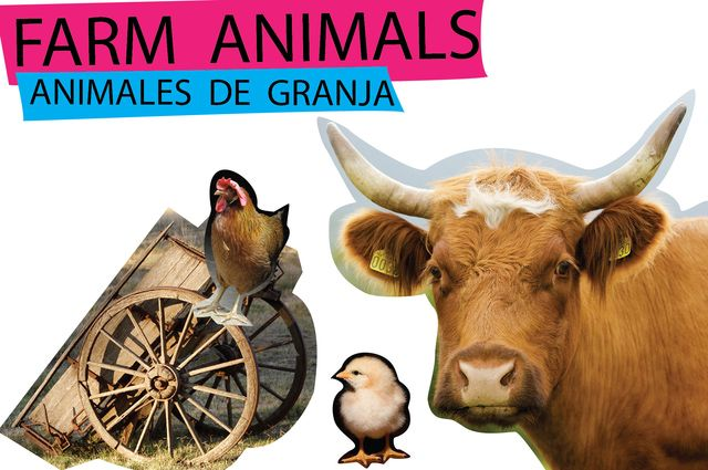 Los animales en inglés y en español: ANIMALES DE GRANJA EN INGLÉS (y de campo)