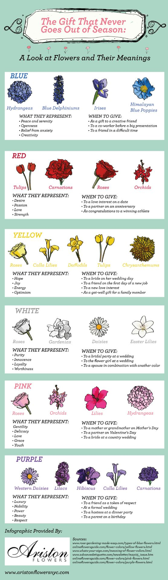 Flowers & their meanings.
