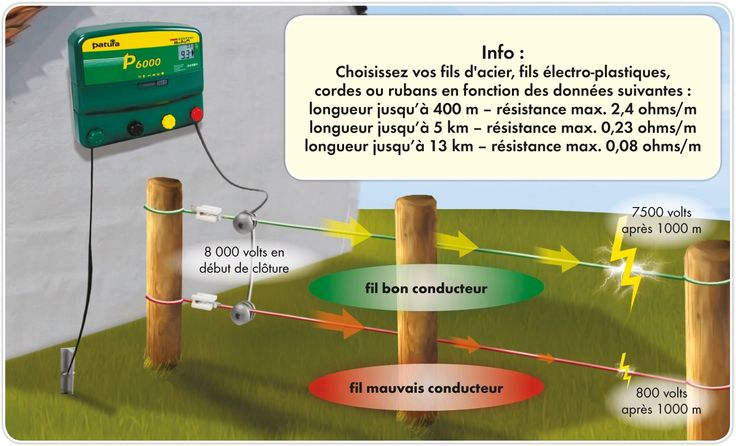 La clôture électrique - Des éléments de base à respecter pour une bonne installation, Bovins viande, Elevage - Pleinchamp
