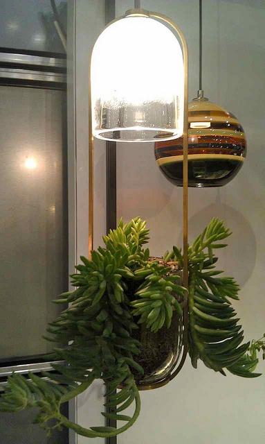 Self lit planter for dark corners