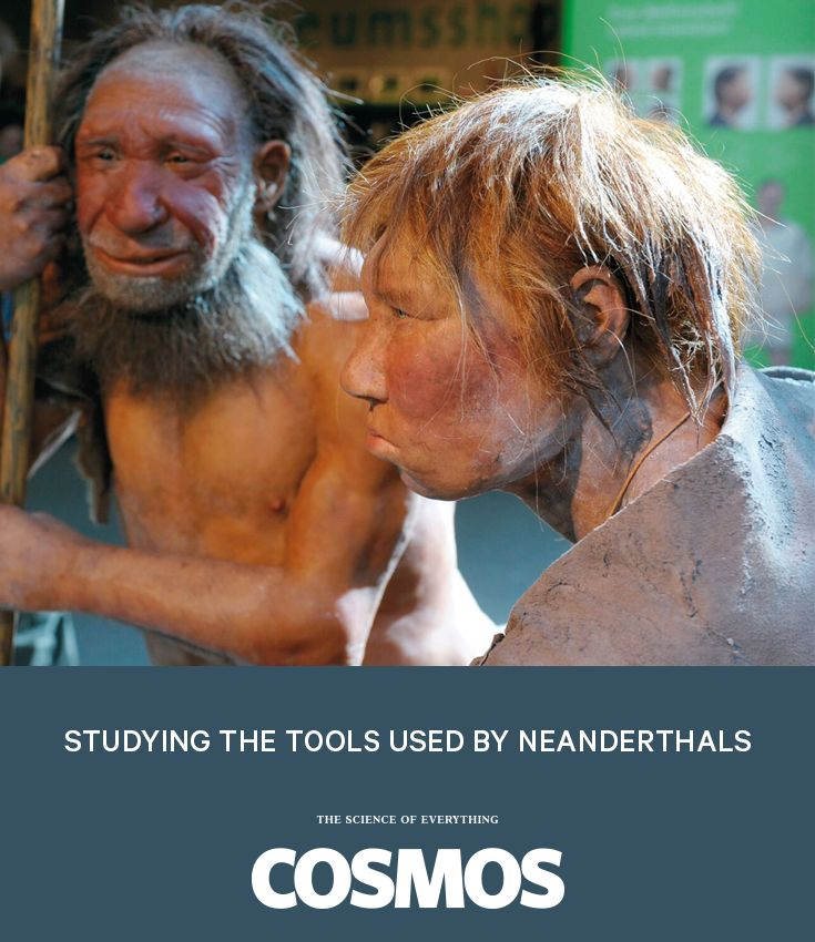 Piecing together the lives of the neanderthals by studying the tools they used.