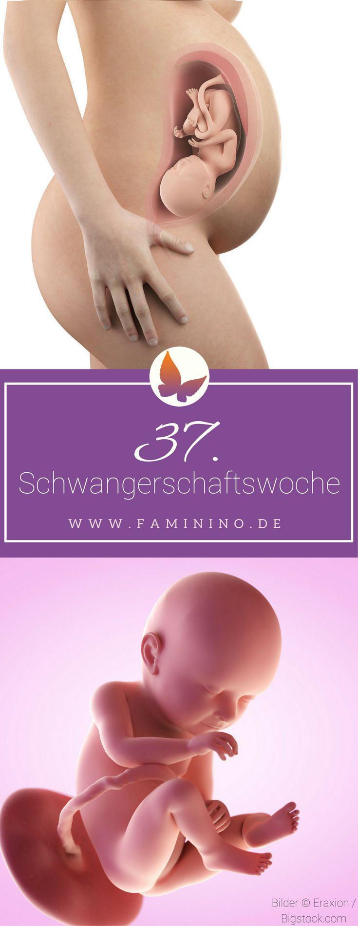 37. SSW (Schwangerschaftswoche): Dein Baby, dein Körper, Beschwerden und mehr