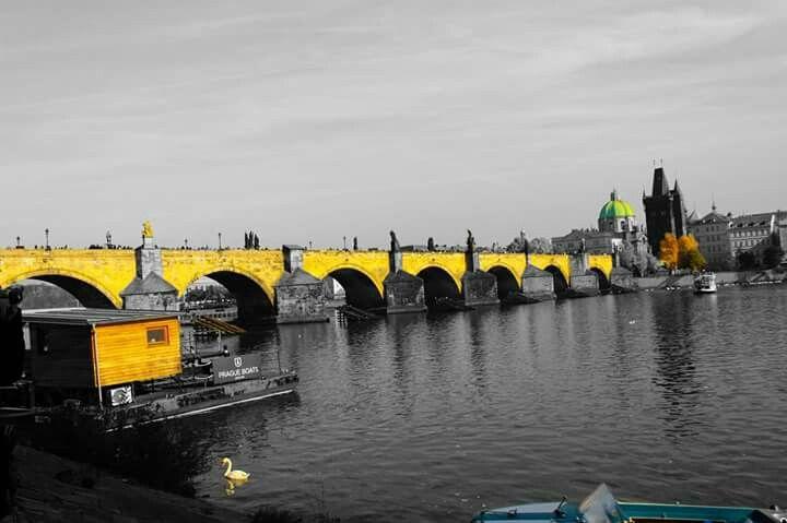 Karlův most   Charles Bridge in Praha, Hlavní město Praha