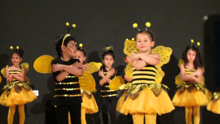 Arı Dansı Gösterimiz / Kırmızı Sınıf
