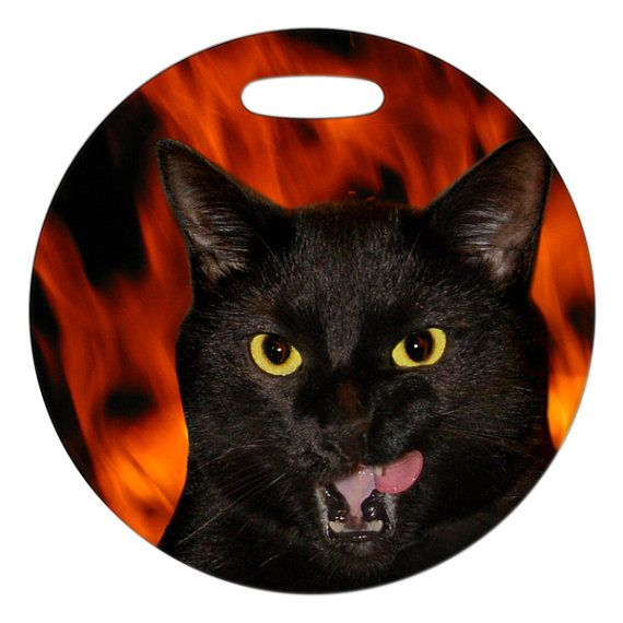 Luggage Tag  Hell Cat Photo  2.5 inch or 4 Inch Round by ebonypaws