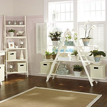Ladder-style shelving unit backed by cafe style traditional shutters.