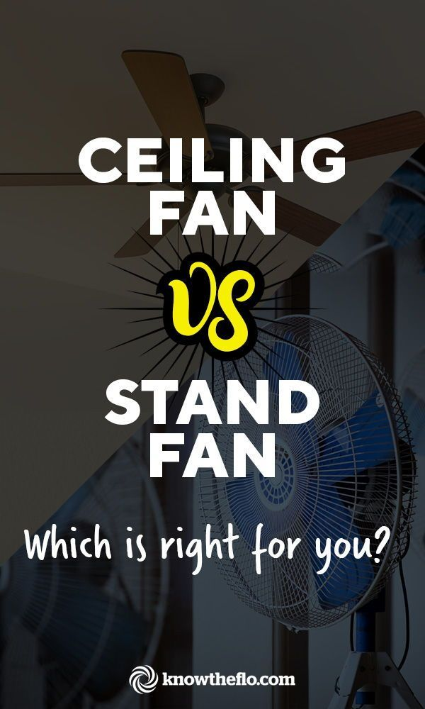 Ceiling Fan Vs Stand Fan Pros Cons Your Definitive Guide