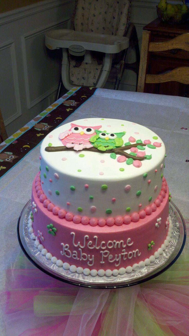 My daughter's baby shower cake we had made... OWLS!! :)