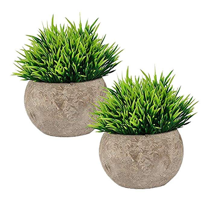 The Bloom Times Fake Plant For Bathroom Home Decor Small Artificial Faux Greenery For House Decorati Bathroom Plants Artificial Plants Small Artificial Plants