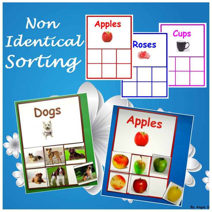 Non Identical Sorting for Autism, Special Ed, Early Intervention, Speech Therapy, ABA, Occupational Therapy, TEACCH, ESL For more resources follow https://www.pinterest.com/angelajuvic/autism-special-education-resources-angie-s-tpt-sto/