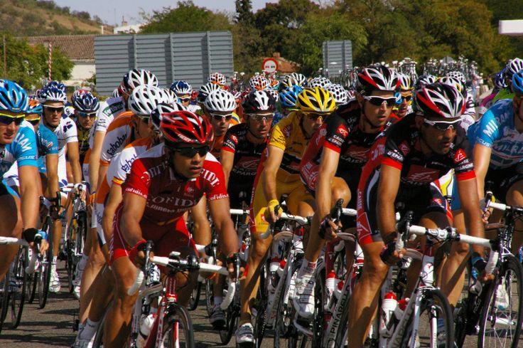 pro riders show