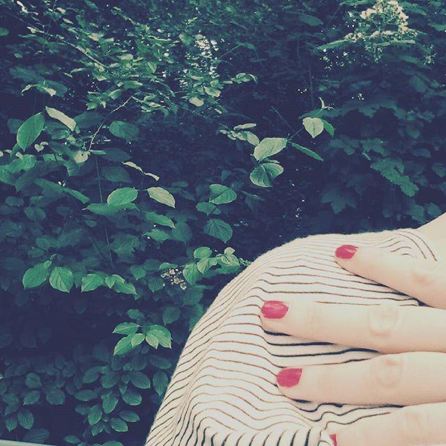 Peccato esser corsi via per il temporale #parconordmilano #picsilli #solepioggia